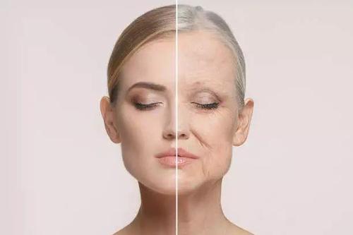 """""""萃芙兰:护肤品能让肌肤美白抗缓衰老吗?""""/"""